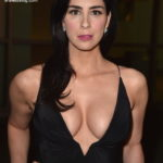 Sarah Silverman boobs